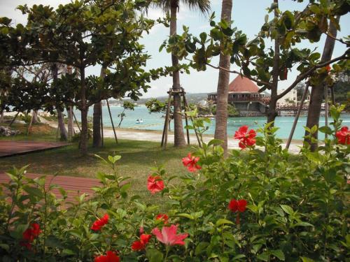 9月の第2週目の沖縄、強烈な太陽が輝く日中は暑いが、朝・夕は涼しい風が吹いてくる。よって、オープンテラスでの朝食は実に優雅で快適である。
