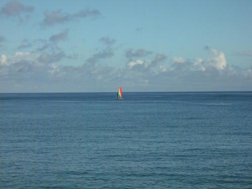 朝食の途中で席を立ち海を眺めにいく。風も波もなく実に穏やかな沖縄の海。朝早くからヨット(写真)が沖に出ている。この風景を堪能できるだけでも幸せである。妻とたわいない会話をしながら1時間以上もかけてゆっくり朝食を楽しむ。ビーチリゾートの醍醐味である。