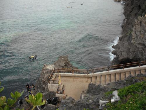 青の洞窟ツアーで、真栄田岬の深く切れ落ちた岩肌に新しいサンゴが復活してきているのを発見。うれしくなり、翌日、再び真栄田岬に行く。