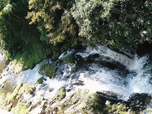 これが東山温泉の中を流れる湯川にかかる伏見ヶ滝です。<br /> 奥東山渓谷(湯の入湖)から流れ出した湯川には、小さな滝がいくつもかかっています。雨降り滝、原滝、向滝、伏見ヶ滝などです。<br /> これらの滝に由来したのか東山温泉の旅館には滝の名前が付く宿が多く、「原滝」、「くつろぎ宿 新滝」、「くつろぎ宿 不動滝」、「くつろぎ宿 千代滝」、「向滝」、「庄助の宿 滝の湯」などの宿があります。