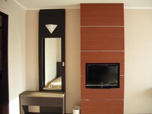 壁に備え付けられたテレビ(写真)。