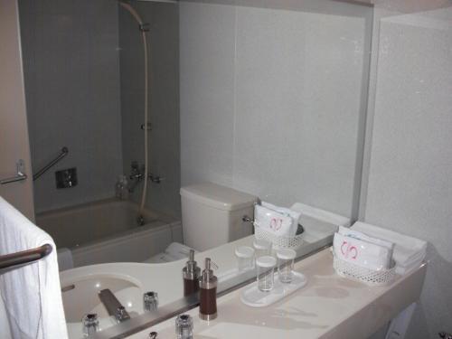 バスルーム(写真)。私は何度も大浴場へ行くので一度も客室のバスタブを使ったことがない。