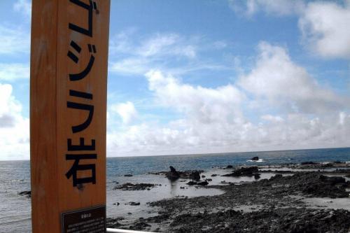 ■金沢・能登半島・白川郷旅行記<br /><br /><ゴジラ岩>石川県珠洲市<br /><br /> おーっ!あったあった! Godzilla !! オーマイゴット! <br /> そこには、海の中へ向かって歩いているような怪獣ゴジラが、いやいや、よく似た海食岩塊がありました。<br /> それにしても小さいなあーー( ̄。 ̄)海岸へ下りてみます。