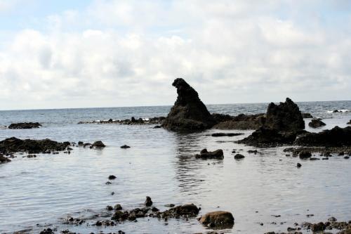 ■金沢・能登半島・白川郷旅行記<br /><br /><ゴジラ岩>石川県珠洲市<br /><br /> 遠くから見ると非常に小さいのですが、高さは4m近くあるそうです。<br /> 日本海の激しい波濤による海食によって形成されたものでしょう。