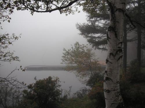 秋雨と霧に囲まれた女神湖周辺(写真)をジョギングする。幸いにも風はないので、傘をさし防寒具を着て走れば寒くはない。