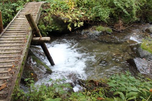 沢を渡ります。こんな橋が2つあったかな。