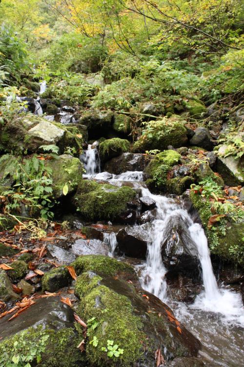 流れが激しく冷たい水が流れてきます。