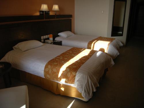 デッド・シー・スパのお部屋。日本のビジネスホテルの2倍以上ありそうな広さです。このホテルには「メディカル・センター」というものがあり、マッサージや泥パックなんかもやってくれます。