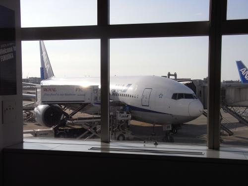 福岡空港から羽田まで飛んで帰ります。<br />