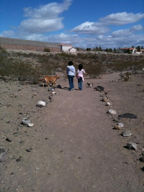こんな砂漠のトレイルがあり、お気に入りの散歩コースとなっています。