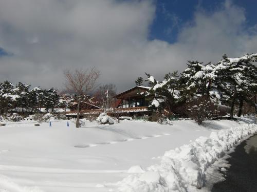 雪に埋もれているような清泉寮(写真)。しかし、本日も営業中である。夏はここでアイスクリームを食べるのであるが、今日はパスする。