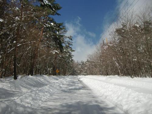 清泉寮からさらに登ると道路は完全に雪道(写真)になる。いい感じ……。スタットレスタイヤで快適に登っていく。