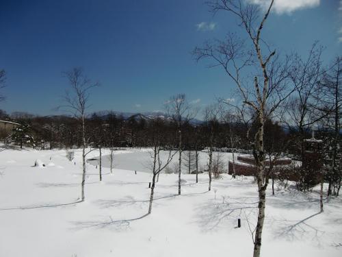 清里高原ホテルの広い庭、池、チャペル(写真)がすべて雪に埋もれ純白の世界になっている。<br /><br />私の清里高原ホテル滞在記は以下のサイト参照<br />http://4travel.jp/traveler/funasan/album/10159224/