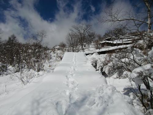 展望台からの眺めが素晴らしいので、私はここに来た時には必ず登る。しかし、今日は登山道(写真)は雪の中。迷ったが……。