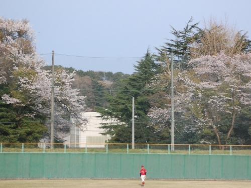 せっかくなので、会瀬球場にも行ってみました。<br /><br />セガサミーVS東芝の試合は、<br />球場に到着したときには、すでに終了直前でした。