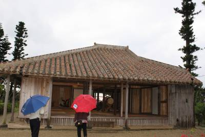 まずは石垣島中央の「やいま村」へ。<br />今日は日中、土砂降りの大雨が降っていたとかで、まだ小雨がぱらついていました。