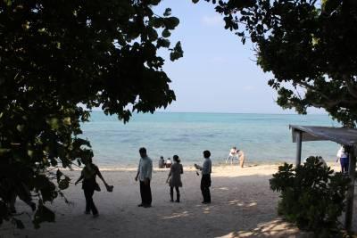 ツアーははオプションの竹富島へ。ほとんどの方は参加していました。<br /><br />最初に星砂の浜へ向かいます。<br />このビーチの入り口の光景がなんとも沖縄らしい。
