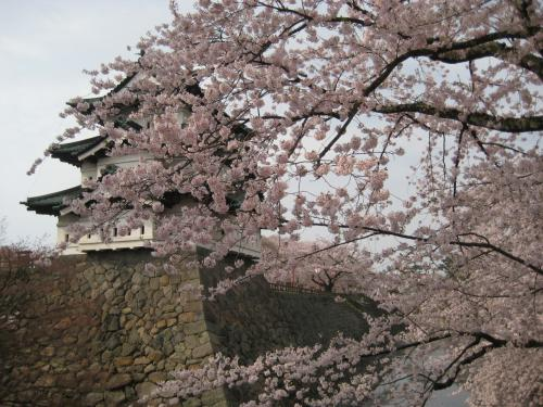「そして、池の汀、橋の袂、路の曲がり角、廻廊の軒先、等にある殆ど一つ一つの桜樹り前に立ち止まって嘆息し、限りなき愛着の情を遣るのであるが、蘆屋の家に帰ってからも、又あくる年の春が来るまで、その一年じゅう、いつでも眼をつぶればそれらの木々の花の色、枝の姿を、眼蓋の裡に描き得るのであった。」(『細雪』より)