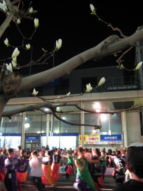 祭りは夜も続きます。<br />よさこいと、ねぶたの踊りが交じり合った、エネルギッシュなダンス。<br />やっと訪れた春を喜ぶ気持ちが溢れていた!
