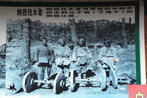 当時、田舎からやって来た納西族の写真。<br /><br />当時と行っても20年ほど前でしょうけど、このギャートルズに出てくるような「石の車輪の台車」を使って、彼らの村から大木を運んできたそうです。