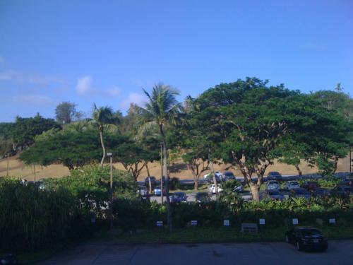 翌朝。いい天気。<br />残念ながらオーシャンビューではなかったが、まぁ安いツアーなのでしかたないかな。