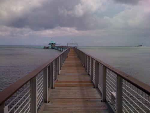 フィッシュアイという施設に立ち寄る。10mの深さの塔を降りて行って海中を眺めるというもの。大人一人16$。