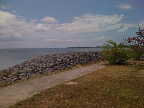 JAN Z'sの庭。<br />石垣やハイビスカスが沖縄を彷彿とさせる。