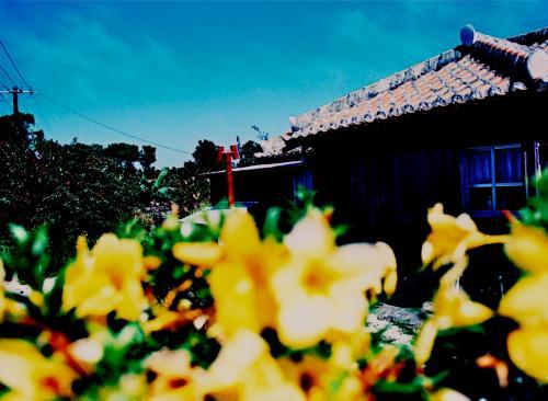 見るもの全てが初めてで、撮るべき場所、撮りたい瞬間が次から次にやって来ます。<br /><br />ものすごくゆっくり時間が流れていて(あるいは時間が止まっているかのようで)、竹富島はとても不思議な場所です。