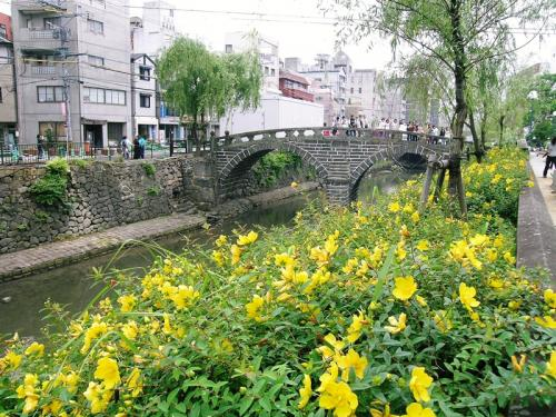 川辺に咲き誇る美容柳ビヨウヤナギ(美央柳ミオヤナギ)<br />この近くのべっ甲専門店でおみやげを買いました。