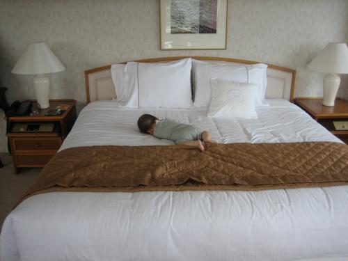 きもちよさそうにゴロゴロー<br />と思ったら、ぐずって、よつんばいでお尻だけ持ち上げた状態で泣きながら寝てしまいました。。どんな寝相だか。