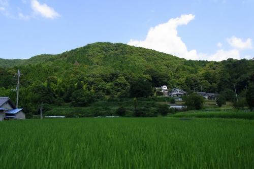 山に近いのどかな風景。山辺の道にも似た景色。