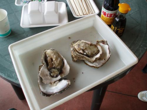 この時期旬の岩牡蠣はミルキーで、何もつけなくても充分美味しかったです。