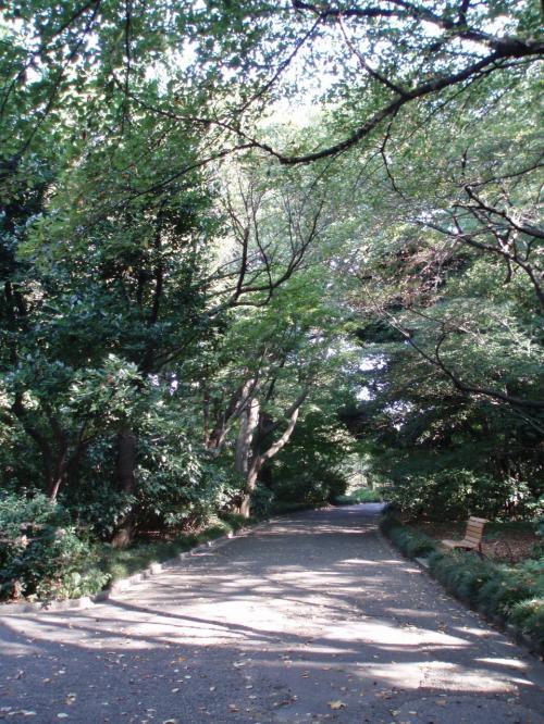 木陰に入るとやっぱり涼しい。<br />あてもなくフラフラ散歩。<br />贅沢な感じ。