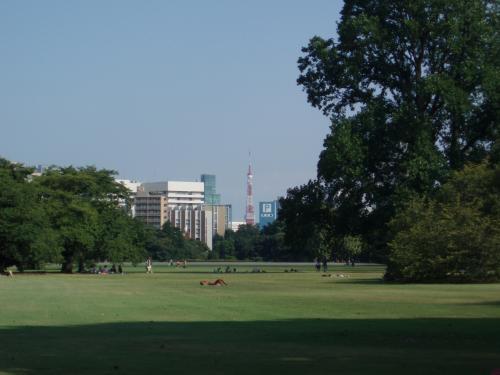 木々の向こうに東京タワーが。<br />外とは違い、ここだけ時間がゆっくり流れているような・・・。<br /><br /><br />