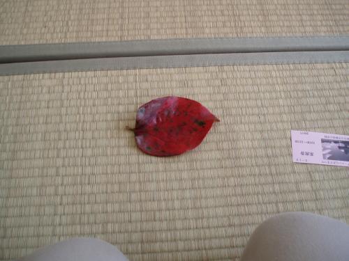 お菓子(生干し柿)が乗っていた、懐紙は紅葉した柿の葉。<br />なんとも風流です。