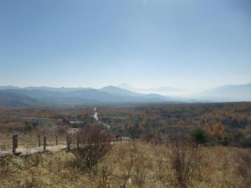 振り返ると「野辺山、清里、甲斐大泉」に続く八ヶ岳山麓の森(写真)が広がる。この眺めの壮観!