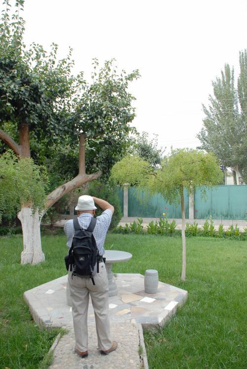 中に入ると、ホテルの建物の手前に庭園が拡がっていました。<br /><br />梨の木が沢山!