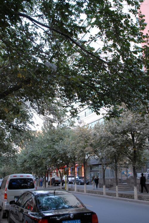 烏魯木齊は、夜の8時でもまだこんなに明るいです。