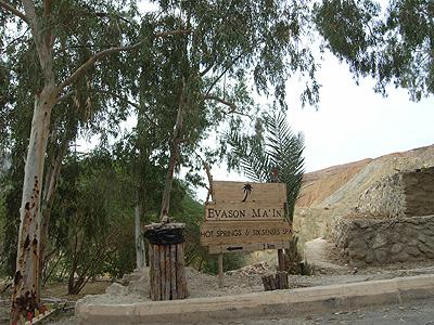 入口には、ホテル「EVASON MAIN」(エヴァソン・マイン)の看板が。ヤシの木があったり、やや南国っぽい雰囲気です。