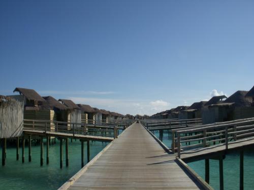 水上ヴィラにご案内します!<br />シックスセンシズ・ラームには70の水上ヴィラがあります。<br />島から3本桟橋(ジェッティ)が出ており、それぞれその両側にヴィラがあります。<br />どのヴィラも1棟1室です。