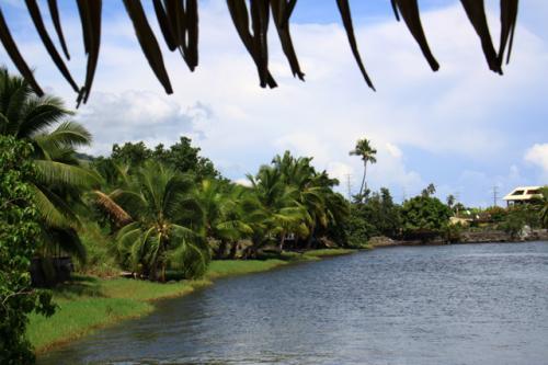 モーレア島で見る一風景