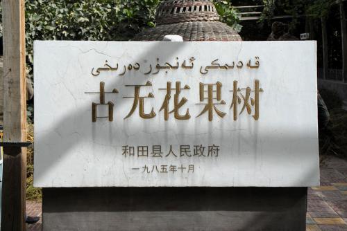 「古無花果樹」の表示。<br /><br />いちいち機関部門の文字が大きく書かれています。<br />