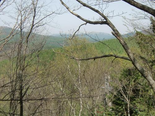 芽吹きがはじまったばかりの森は明るく見通しがいい。遠くの山まで見える。夏になると森は葉っぱでおおわれ視界がさえぎられる。
