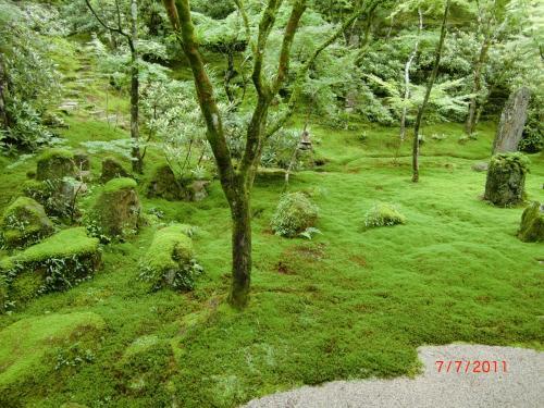 本堂の裏には美しい「苔のお庭」。