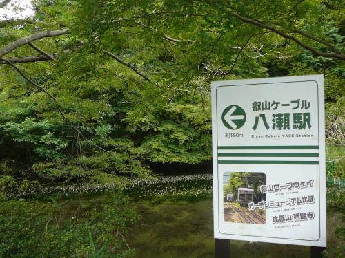 8月4日。<br />京阪出町柳駅から叡山電鉄八瀬比叡山口駅に着きました。ここからケーブルカーに乗って、北山コースの出発地点、叡山ケーブル比叡駅へと向かいます。<br />この道を反対方向に行くと、瑠璃光院です。