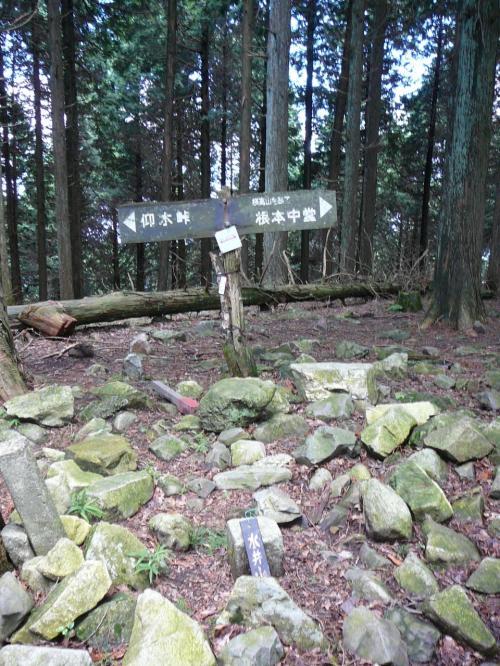 横高山から尾根伝いに30分ほど歩くと、標高794m、水井山に到着です。トレイルコースの中で一番高い山だそうです。今日は叡山ケーブル比叡駅(標高790m??)から登ったので、そうはいってもそんなに登っていません。