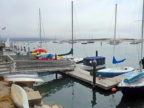 モロベイは淡水と海水が交わる汽水域で、水辺の生き物が豊富で、漁港としても栄えています。
