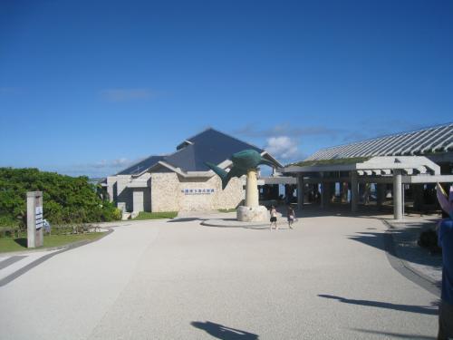 いよいよ美ら海水族館です。朝の8時30分の開館時にはすでに到着してました。