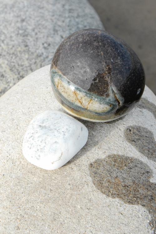 で、こま達はと言えば、「和田玉なんてそう簡単には有るはずも無し」と言う事で、変わった形や模様の石を探しておりました。<br /><br />気付いたら、手に持てないほどになっていたので、ポケットに詰め詰めに入れて、歩くのが大変になっちゃいました(石を拾うなんて考え無かったので、リュックを車に置いたまま、持たずに来ちゃいました)。<br /><br />でも、変わった石も多くて、写真の石など、濡れて始めて綺麗さが判る・・・と言うのも多かったです。