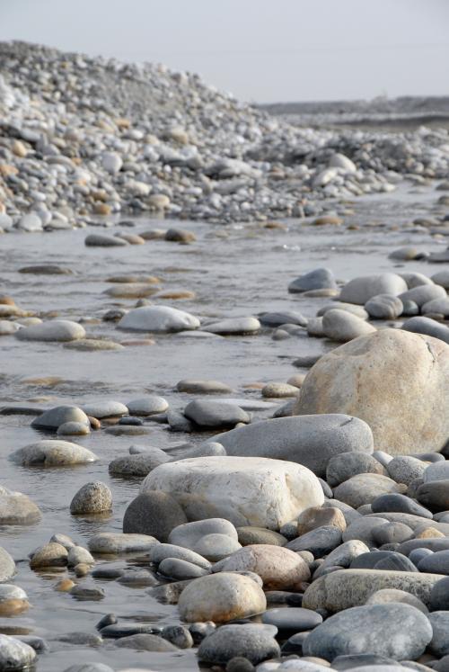 「水槽の石にならもってこい」って感じの小石が沢山!!